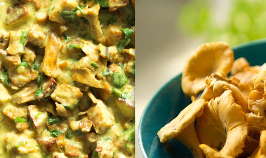 kurki, grzyby, wege, zdrowie