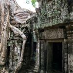 Kambodża - Ta Prohm
