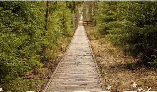 Iza Raczkowska znajdowanie ciszy letni wyjazd z joga i medytacja 2018